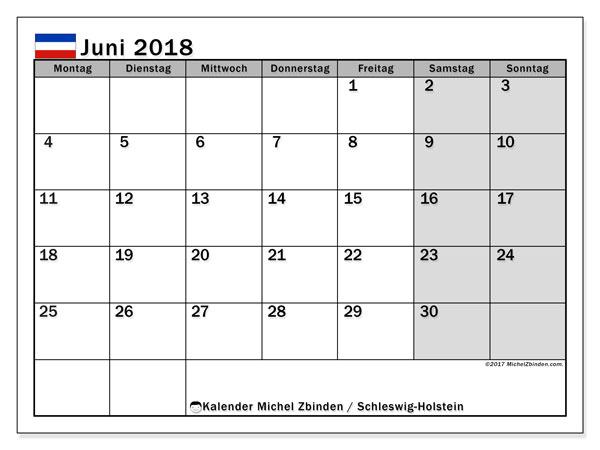 Kalender für Juni 2018, , mit Feiertagen Schleswig-Holstein. Kostenloser Planer zum ausdrucken.