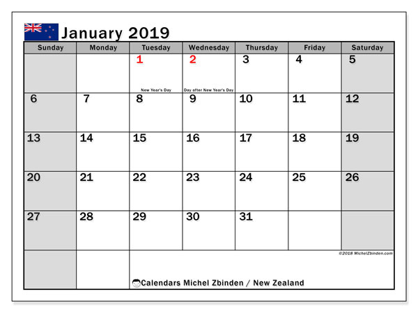 Calendar January 2019, with the holidays of New Zealand. Free printable monthly planner.