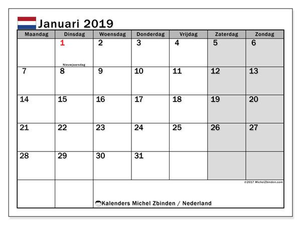 Kalender januari 2019 met de feestdagen van Nederland. Kalender voor de maand die gratis moet worden afgedrukt.