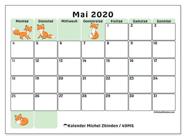 Kalender Mai 2020, 49MS. Kostenloser Planer zum ausdrucken.