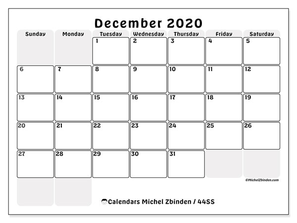 December 2020 Calendar, 44SS. Free printable monthly planner.