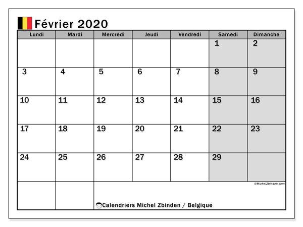 Calendrier février 2020, avec les jours fériés de la Belgique. Planificateur à imprimer gratuit.