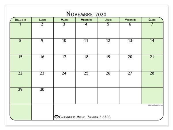 Calendrier novembre 2020, 65DS. Planificateur à imprimer gratuit.