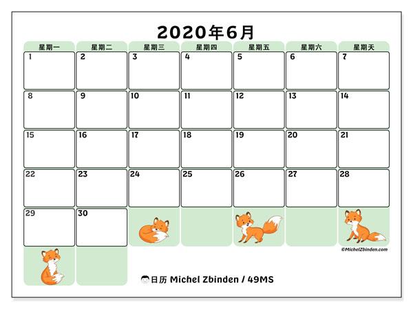 日历2020年6月, 49MS. 组织者免费打印.